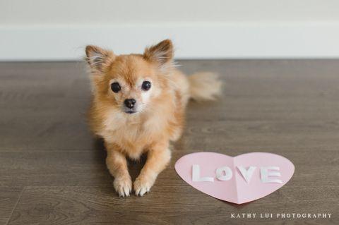 Kathy Lui Photography