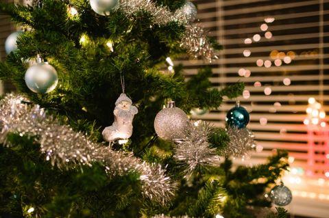 Christmas2014_01